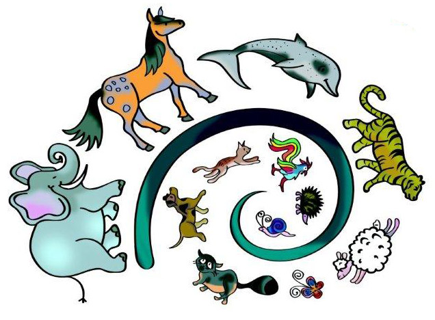 Animal Ambassadors e.V.